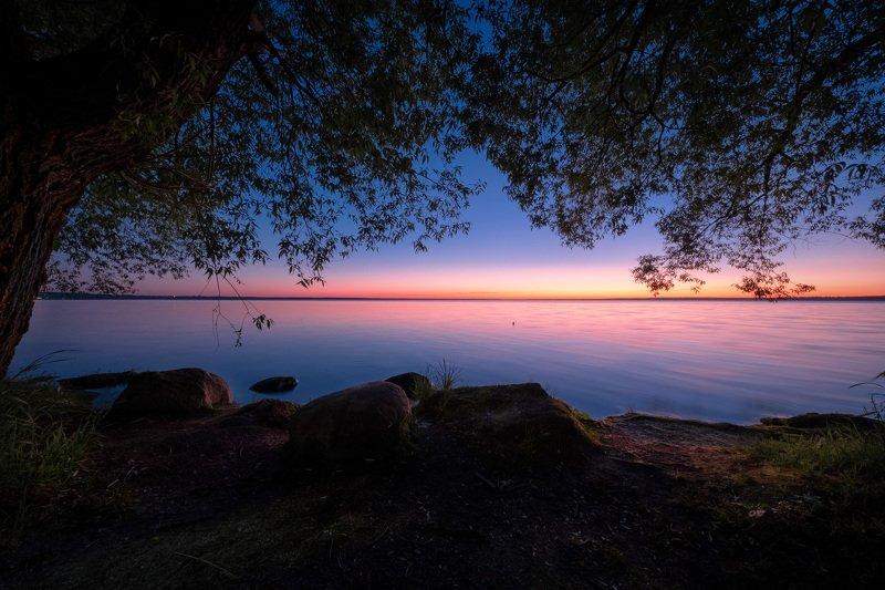 плещеево, озеро, ночь, закат, деревья, камни, вода, небо, отражения Июньские сумерки фото превью