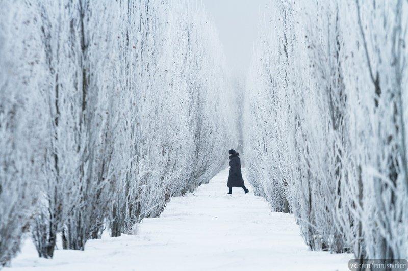 церковь, мороз, зима, религия, иней, снег, архитектура, храм, люди, репортаж, омск, россия Омская зимаphoto preview
