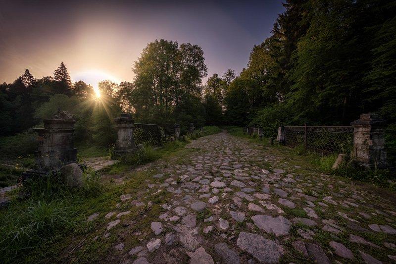 середниково, чертов, мост, рассвет, солнце, деревья, лето, лучи Утро на чертовом мосту фото превью