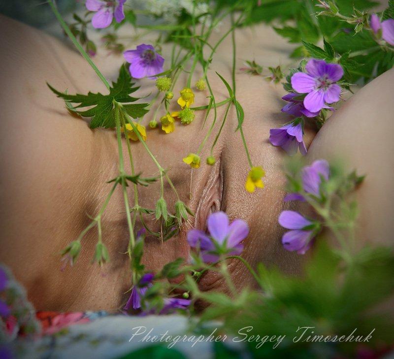 девушка лес Июньское разнотравье)photo preview