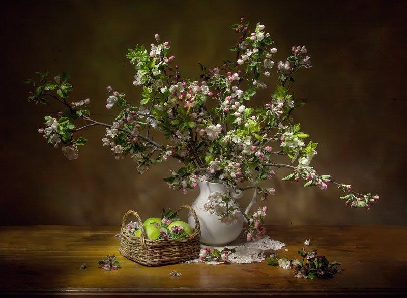 натюрморт, яблоки, яблоня, яблоня цветет Яблонька... фото превью