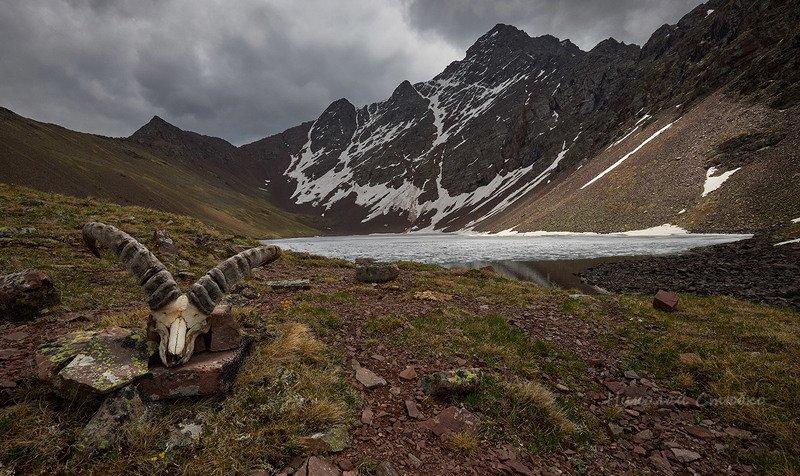 кавказ горы озеро У озера горных духовphoto preview