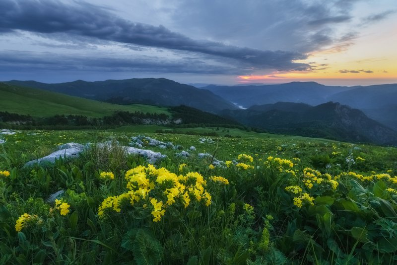 северный кавказ, рожкао, дженту,рассвет,июнь, Рассвет на Джентуphoto preview