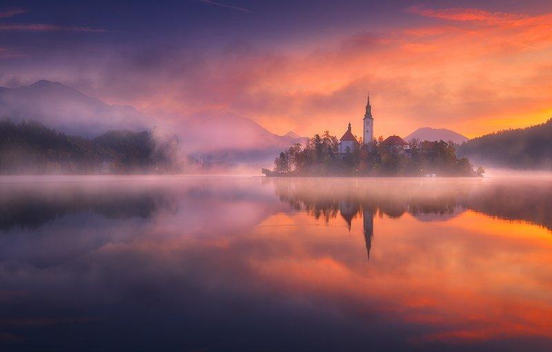 bled slovenia lake reflection mist fog sunrise castle  bled фото превью