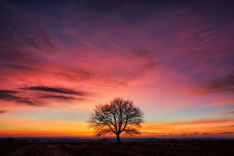 colors, sunrise, nature, beautiful, travel, lights Good morningphoto preview