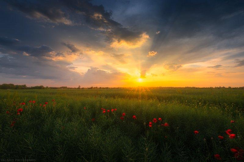 Kaliningrad, sunset, landscape, nature, пейзаж, природа, Калининград, закат, вечер Обратная сторона надвигающейся грозы.photo preview