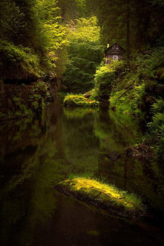 landscape, spring, forest, river, gorge, gorges, rocks, trees, water, reflection, cottage, house, czech republic, green Homephoto preview