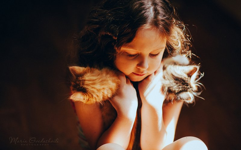 kitten, cat, girl, cute, portrait, mariagvedashvili ***photo preview