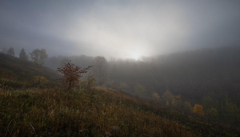 октябрь утро Утро.photo preview