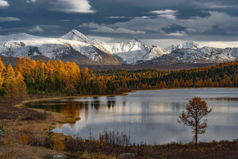 алтай,горный алтай,осень,закат,киделю Краски осеннего Алтаяphoto preview