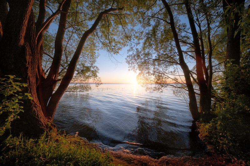 плещеево, озеро, закат, деревья, вода, небо, отражения Окно в сказку фото превью