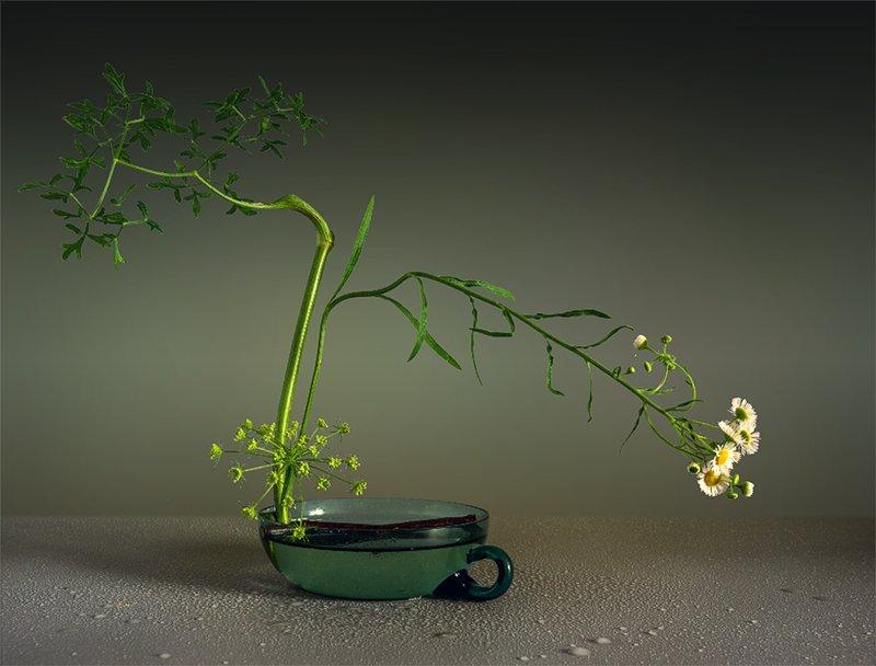still life, натюрморт,    винтаж,    цветы,  минимализм, икебана икебанаphoto preview