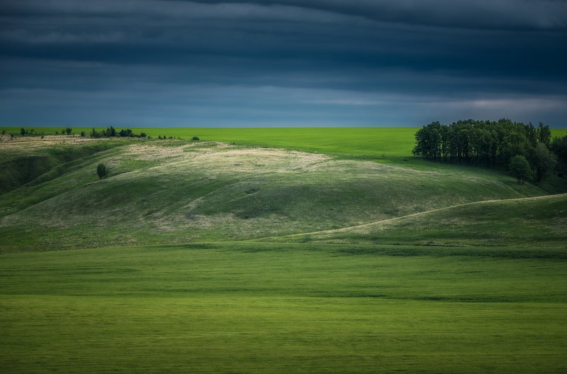 тульская область, поле, природа, утро Бархатные склоныphoto preview