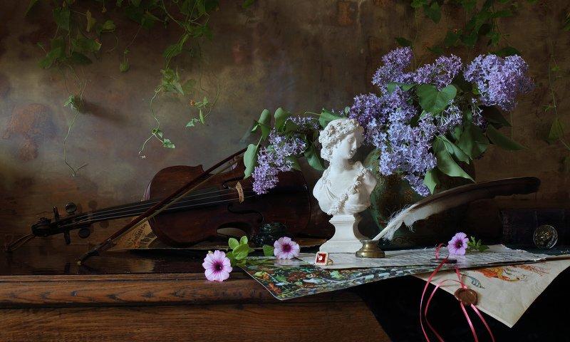 цветы, сирень, скрипка, музыка, девушка, скульптура Натюрморт со скрипкой и бюстом девушкиphoto preview