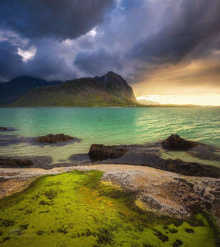 lofoten, norway, norwegian,landscape,summer,summertime, Colours of Lofoten in summertime.photo preview