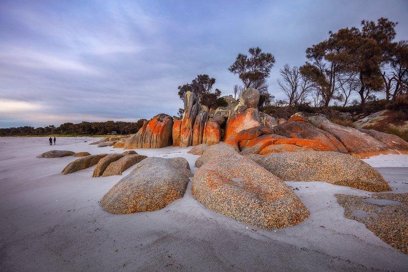 tasmania, bay of fires, cosy corner Winter in Tasmaniaphoto preview