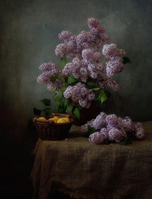 натюрморт,цветы,лето,сирень сирень... фото превью
