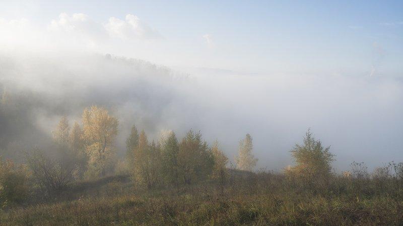 октябрь. утро. туман. Октябрьское утро.photo preview