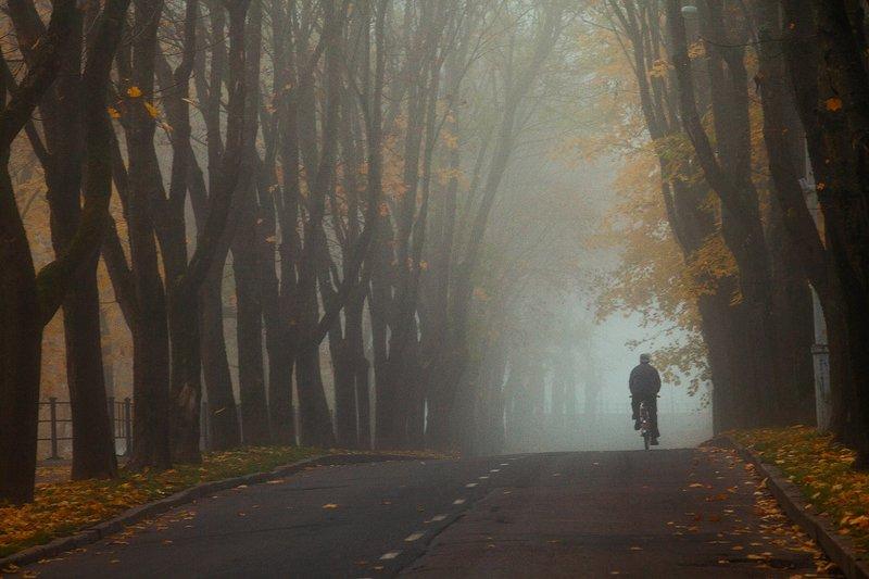 осень Осеньphoto preview