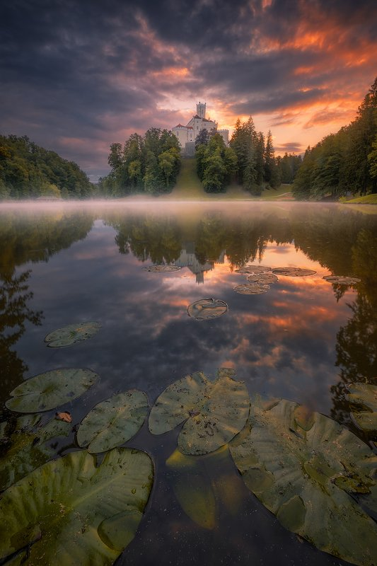 trakoscan, croatia, landscape, fog, mist, clouds, sky, reflection, tree, forest, mist, sunrise trakoscanphoto preview