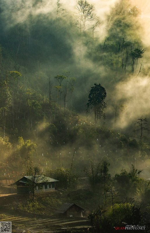 quanphoto, landscapes, morning, sunlight, sunshine, rays, trees, village, nature, vietnam, rural, dreaming, forest Dreamland фото превью