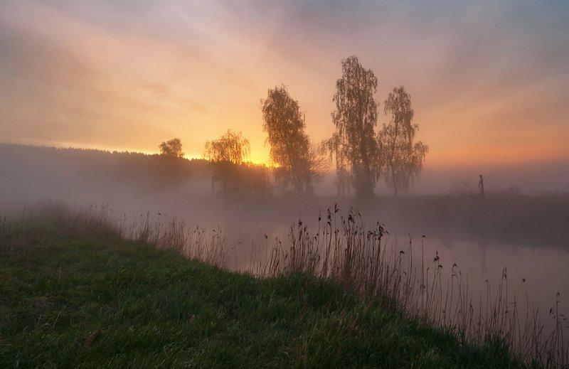 утро, свислочь, туман, пейзаж Утром в маеphoto preview