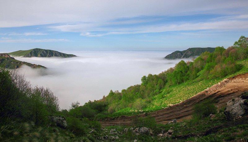 горы,вершины,пейзаж,небо,деревья,чечня,природа Горный пейзаж..photo preview