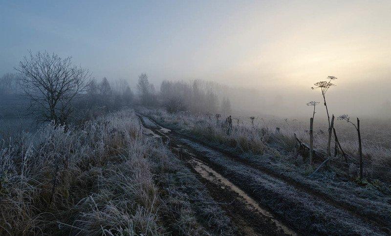 утро, туман, архангельское В тумане спрятался рассветphoto preview