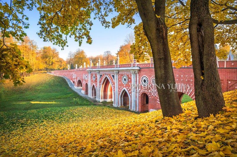 москва, царицыно, осень, пейзаж Мост в оврагеphoto preview