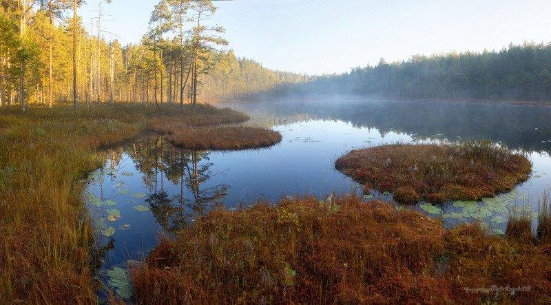 Малые озёра Псковского края.photo preview