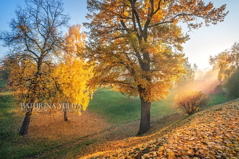 москва, царицыно, осень, пейзаж Осенний оврагphoto preview