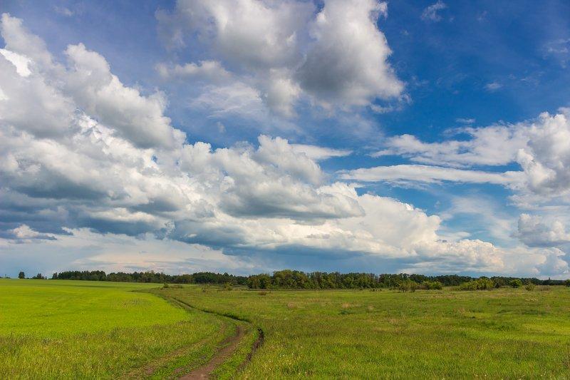 луга, облака, небо, природа, деревья, дали, дорога, дороги photo preview