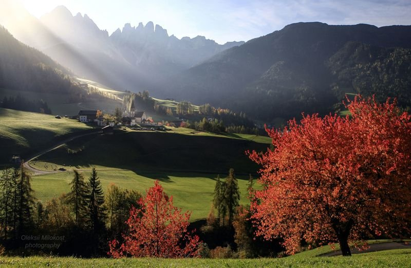 Солнечное утро в Италииphoto preview