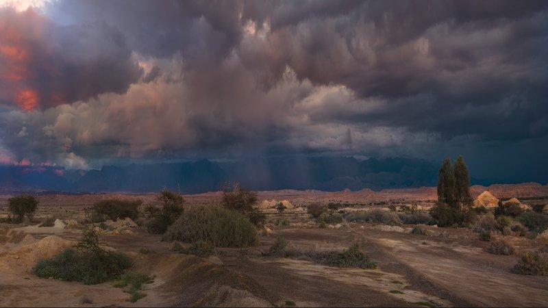 израиль, арава, закат, горы, небо, пейзаж, природа, пустыня,дождь Зима в Аравеphoto preview
