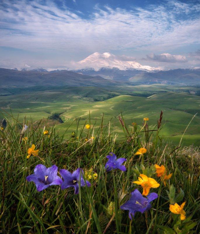 кавказ, эльбрус, приэльбрусье Лето на Кавказе.photo preview