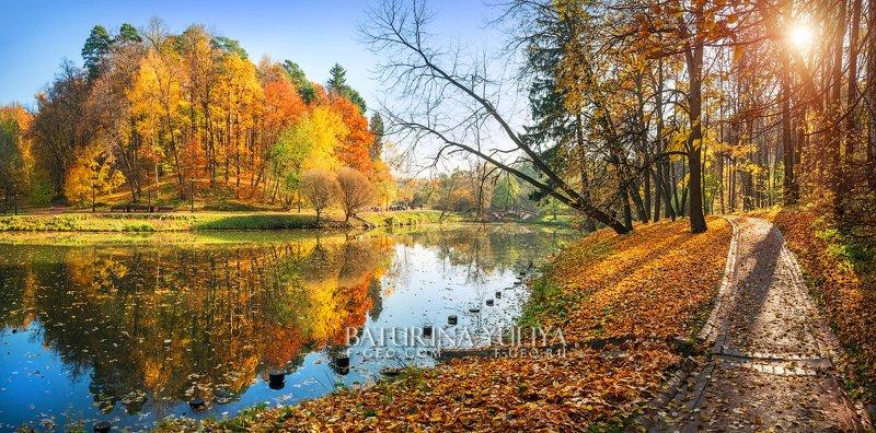 москва, царицыно, осень, пейзаж Царицынский видphoto preview