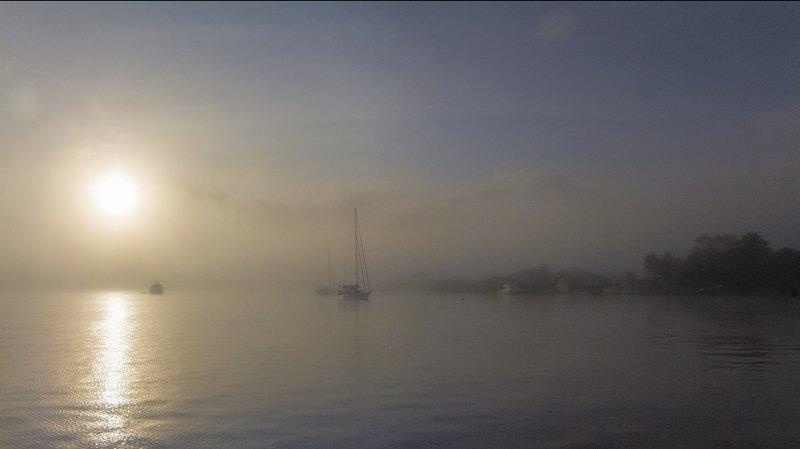 суринам, река суренам, парамарибо,туман,лес,яхты, рассвет утро туманноеphoto preview