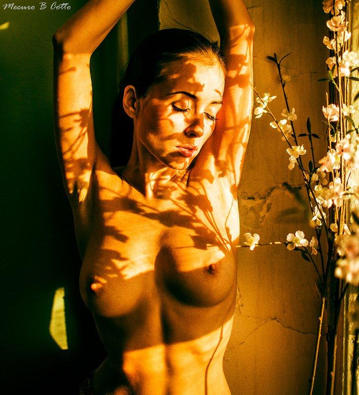 mecuro, mecurobcotto, mecurocotto, nu, nude, model, mood ***photo preview
