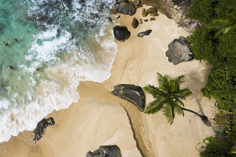 Море, пляж, берег, Сейшелы, аэро, коптер Дикий пляжphoto preview