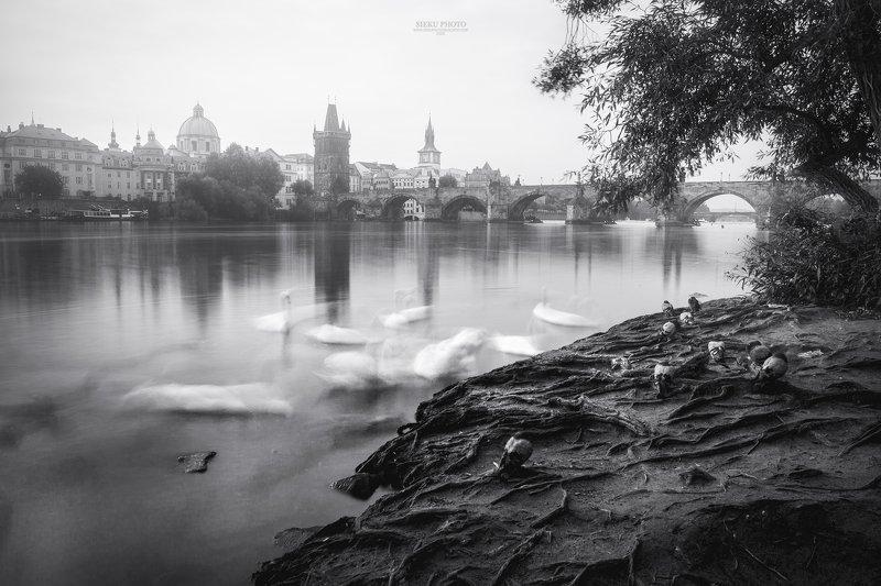 Prague photo preview