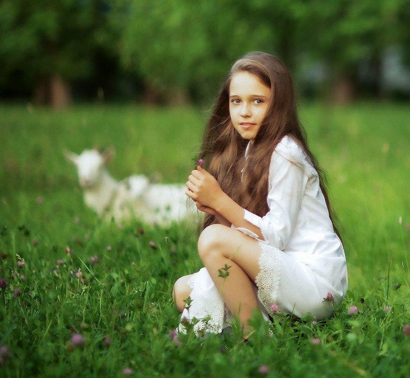 девочка,лето, деревня,козы,луг, girlie, goats, village, summer, nature Лето в деревнеphoto preview