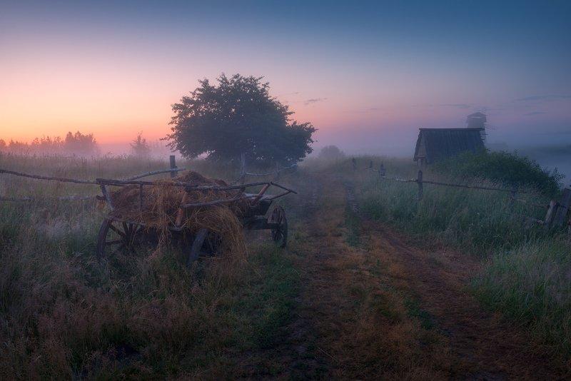 туман, утро, деревня, телега, дорога, рассвет Туманная дорогаphoto preview