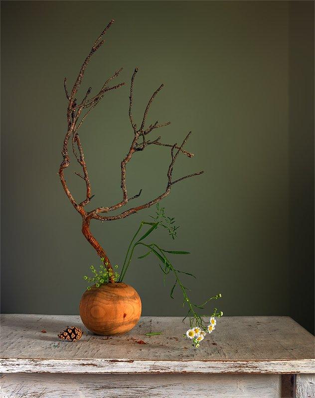 still life, натюрморт,    винтаж,    цветы,  ромашки, ветка, сосна, минимализм, икебана, шишка, композиция с сосновой веткой и ромашками. икебана.photo preview