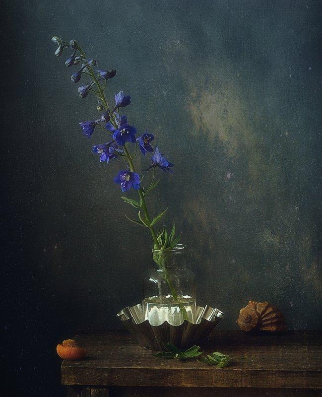 натюрморт,цветы,лето,дельфиниум дельфиниум... фото превью