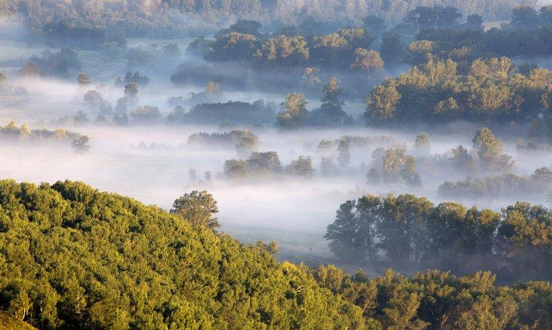 природа, пейзаж, утро, туман, урал, южный_урал Туман в долинеphoto preview