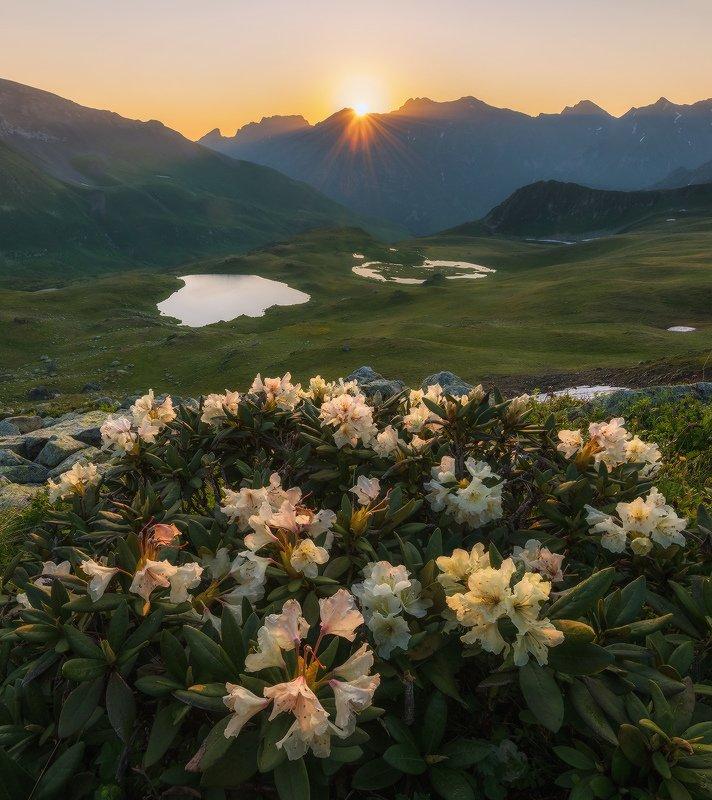западный кавказ, загедан скала, пятиозёрье, июль, рассвет. Летний рассвет на Загеданском  хребтеphoto preview