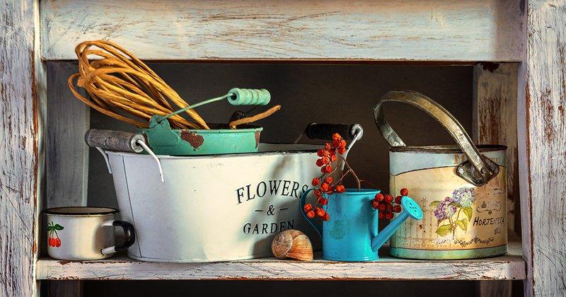 still life, натюрморт,    винтаж,    цветы,  посуда, полка, на полочкеphoto preview