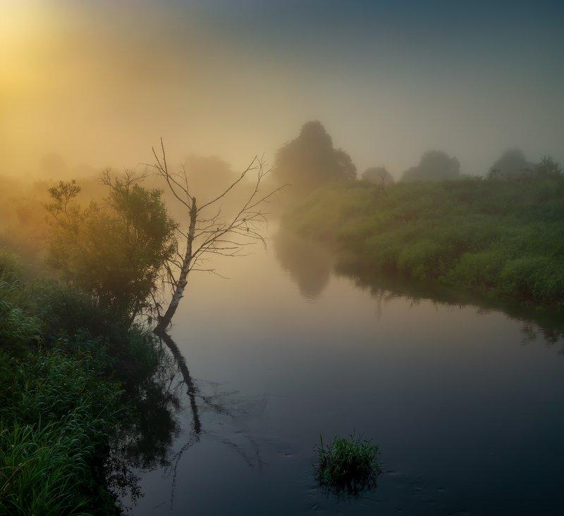 Солнце Шерны ... фото превью