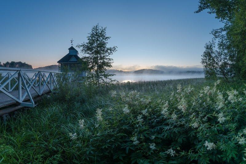 Утром в лабазникеphoto preview