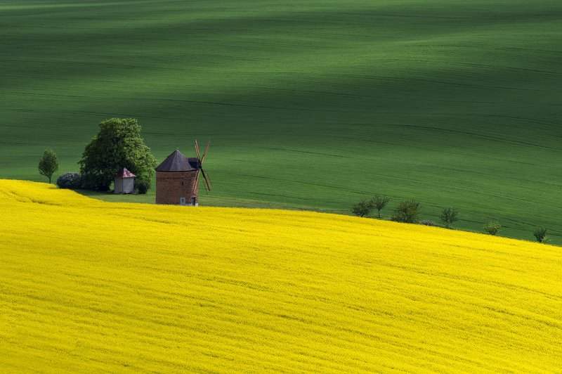 landscape, moravia, windmill, green, yellow, Windmillphoto preview